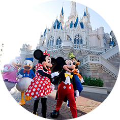 14 Minutes From Disney, Orlando Attractions